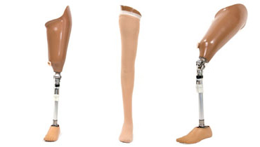Above Knee modular prosthesis with single axis knee and single axis foot